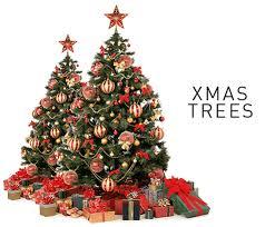 tree purchase rainforest islands ferry