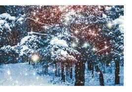 weihnachtsdeko außen tolle ideen tipps die moderne hausfrau
