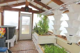 aquaponics a cost effective source of healthy food the taos news