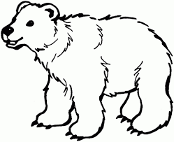 the elegant as well as stunning polar bear coloring page for