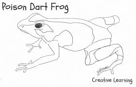 dart frog coloring page poison dart frog coloring pages crafts