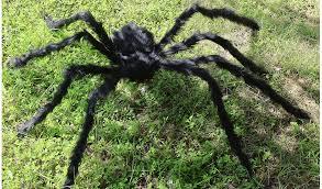 huge 5 ft hairy spider halloween decoration 12 95 reg 29 95
