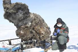 scientists extract dna extinct woolly mammoth bring