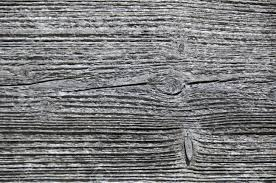 closeup of a weathered wood surface grey tree structure stock