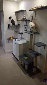 Cat Wall Furniture Cat Wall Album On Imgur
