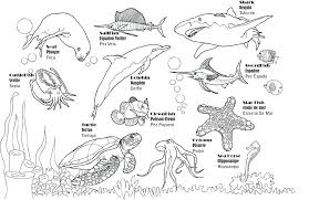 design coloring pages pdf shapes coloring pages shapes coloring pages aquarium page color
