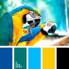 Yellow Color Combinations Best 25 Yellow Color Palettes Ideas On Pinterest Room Color