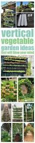 Verticle Gardening by Vertical Gardening Ideas 20 Vertical Vegetable Garden Ideas 43