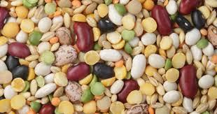 legume a cuisiner recettes de légumes idées de recettes à base de légumes