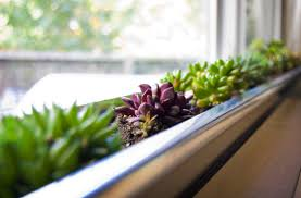 awesome indoor windowsill planter gallery trends ideas 2017