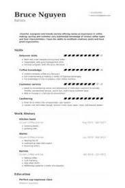 sample cv kitchen hand example of a resume cv