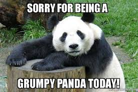 Memes About Being Sorry - sorry for being a grumpy panda today confession panda make a meme
