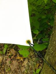Backyard Movie Night Projector Best 25 Outdoor Projector Ideas On Pinterest Outdoor Theatre