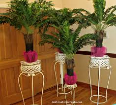 backdrops arches columns u0026 plant stands wedding decor rentals