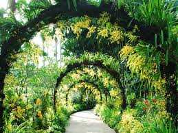 World Botanical Gardens Facts About Singapore S Unesco World Heritage Site