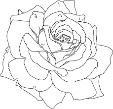 roses coloring pages roses in heart valentines coloring pages