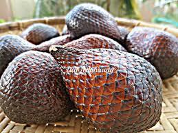 Snake Fruit Tree - popular sour fruits salak salacca edulis reinw pedada iban