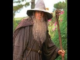 Gandalf Halloween Costume Gandalf Grey