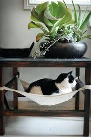 hammock dog bed u2013 startupselfie co