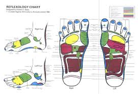 Foot Reflexology Map Services Vitality Enterprises For Your Health And Well Being