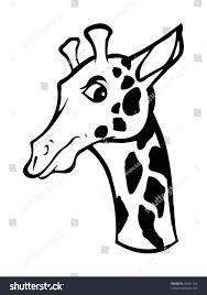 cartoon vector outline illustration giraffe stock vector 45891160