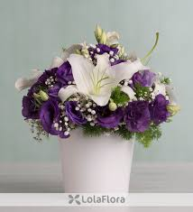purple lillies lilies and purple lisianthus vibrant hug