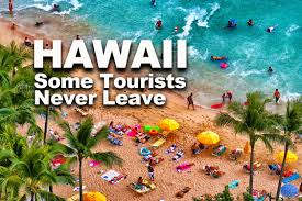 hawaii travel bureau hawaii tourists find hawaii to leave some never do
