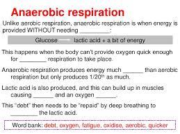 aerobic u0026 anaerobic respiration