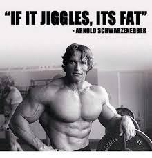 Arnold Schwarzenegger Memes - if it jiggles its fat arnold schwarzenegger arnold