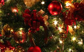 christmas pictures google search christmas magic pinterest