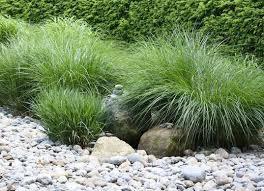 easy landscaping for the lazy gardener ornamental grass and hosta