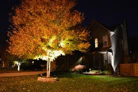 Professional Landscape Lighting Green With Envy Llc Professional Landscape Lighting