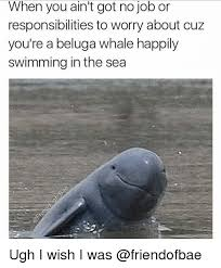 Whaling Meme - when you ain t got no job or responsibilities to worry about cuz