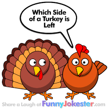 thanksgiving jokes new turkey joke