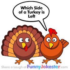 thanksgiving jokes new turkey joke