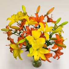 Yellow Lilies Orange U0026 Yellow Asiatic Lilies Asiatic Lilies Tulips Com