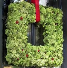 41 outstanding moss craft ideas feltmagnet