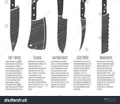 types kitchen knives vector infographic template stock vector