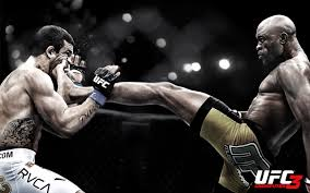 1920x1200px high quality image of ufc 29 1461012119