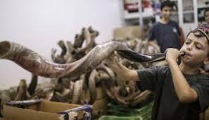 shofares de israel antílope vs carnero qué shofar se puede utilizar en rosh hashaná