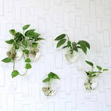 best 25 indoor wall planters ideas on pinterest herb wall
