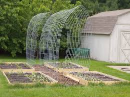 trellis gardening welcome to the homesteading today forum and
