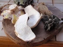 comment cuisiner les cepes frais comment nettoyer des cèpes frais sans les abîmer résolu trucs