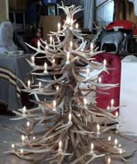 dan macphail studio antler trees
