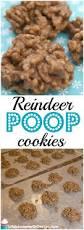 reindeer cookies life is sweeter by design