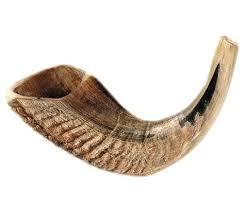 rams horn trumpet shofar clip 24