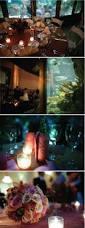 Bill Gates Aquarium In House by 28 Best I Love Aquariums Images On Pinterest Aquarium Wedding