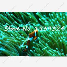 Aquarium Decorations Cheap Popular Aquarium Decorations Cheap Buy Cheap Aquarium Decorations