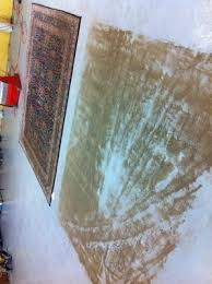 Area Rug Cleaning Ct Oxford Ct Carpet Cleaning Carpet Cleaner In Oxford