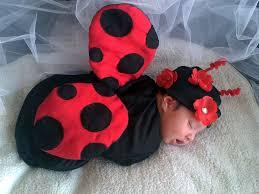 Ladybug Infant Halloween Costumes Collection Baby Ladybug Halloween Costume Pictures